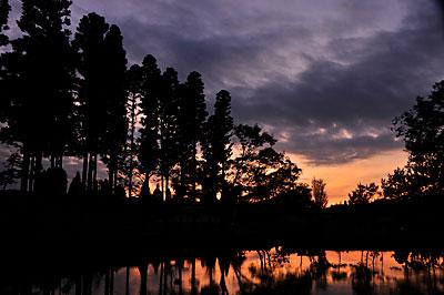 中山池からの夕陽