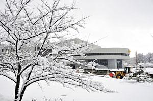 冬の正本堂