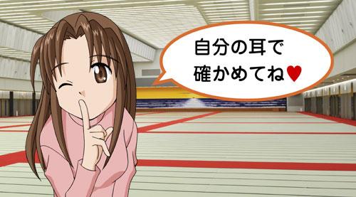 noriko03 【音響】平面スピーカーでスッキリ聞こえるよ!(その3)