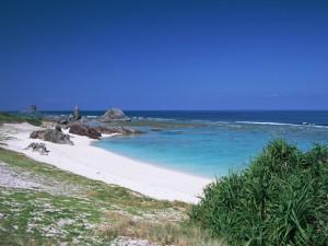 gj005 l 300x225 バリ島で聴聞 世界の親鸞会